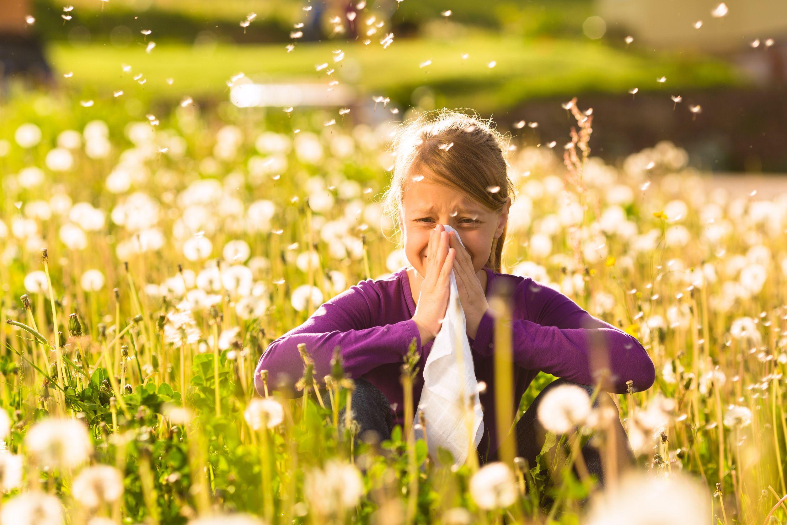 Alimentos para combatir la alergia primaveral